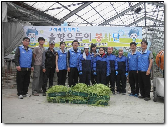 [강릉지사]외국인근로자와 함께하는 농촌봉사활동